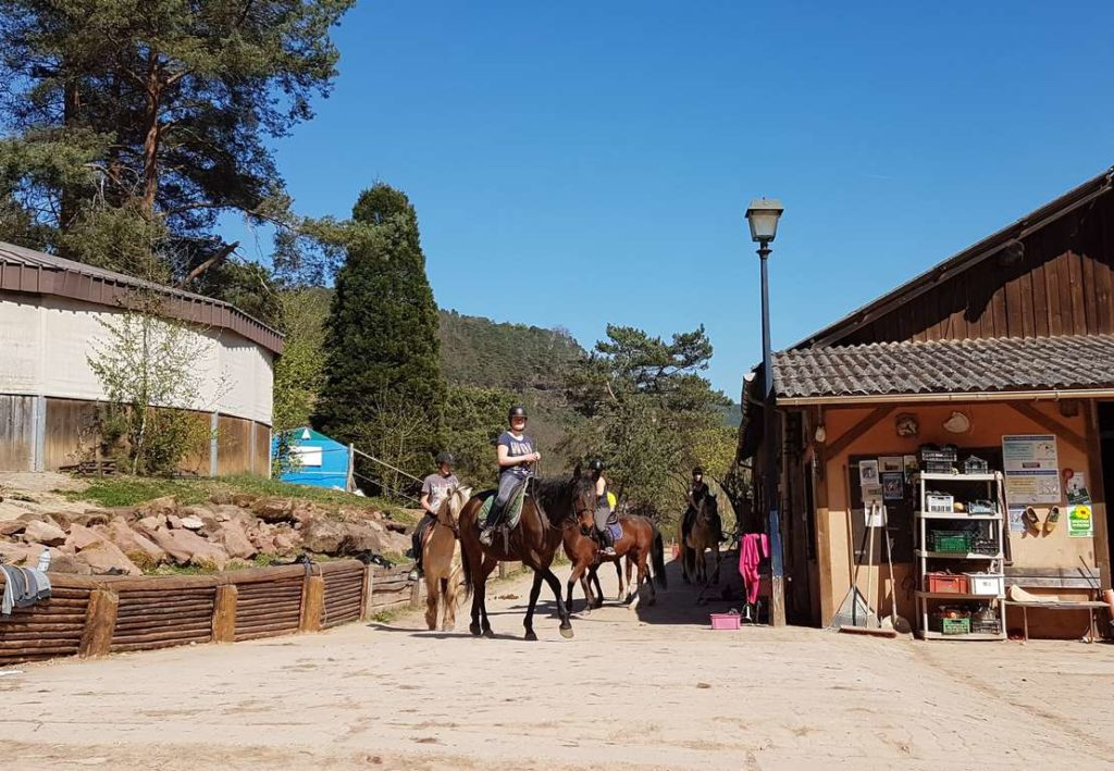 Centre Equestre Obersteinbach