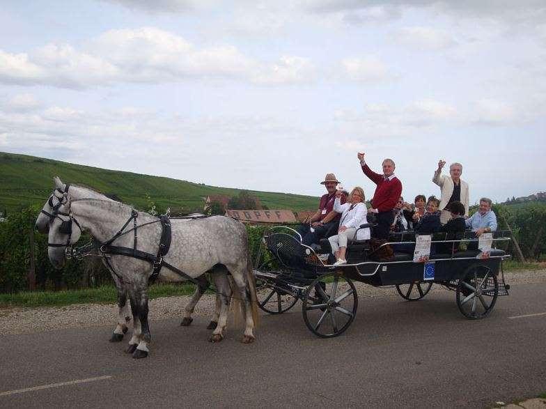 Domaine Equestre de Stambach